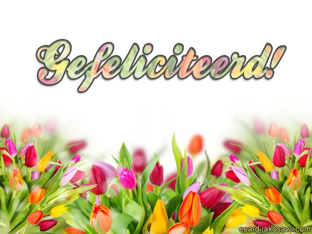 Gefeliciteerd Tulpen   Sbpractices