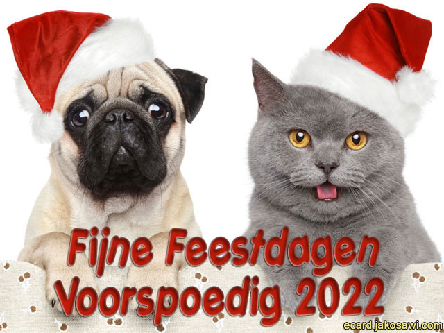 fijne feestdagen 1305<br /> poesje en hondje met kerstmuts<br /> fijne feestdagen en een voorspoedig 2015
