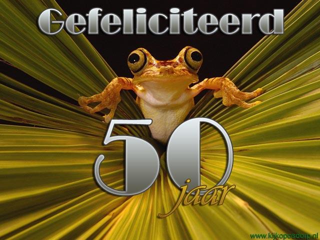 e card verjaardag 50 jaar E Card Verjaardag 50 Jaar   ARCHIDEV e card verjaardag 50 jaar