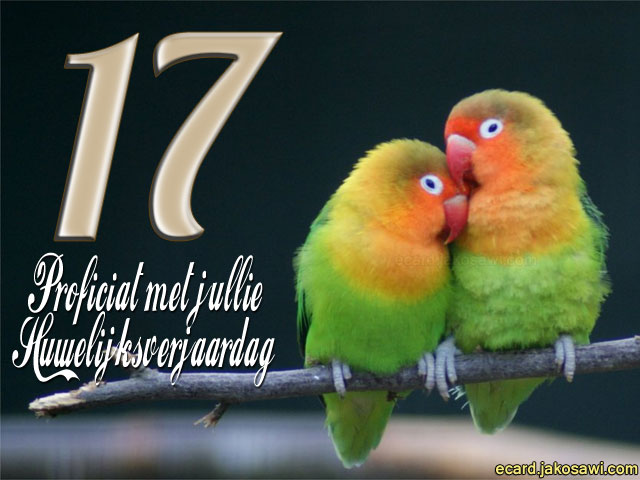 Jakosawi E Cards 17 Jaar Lovebirds 1401
