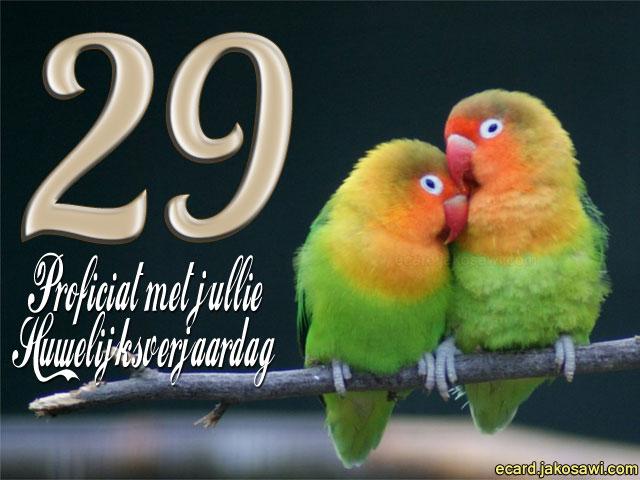 29 jaar getrouwd Kaartje 29 Jaar Getrouwd   ARCHIDEV 29 jaar getrouwd
