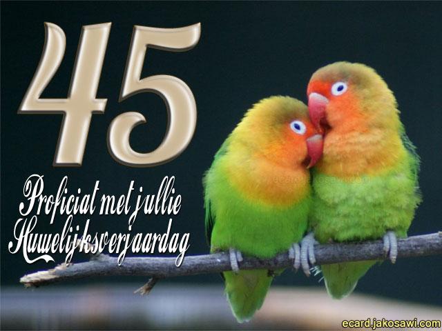 45 jaar getrouwd kaart 45 Jaar Huwelijk Ecard   ARCHIDEV 45 jaar getrouwd kaart